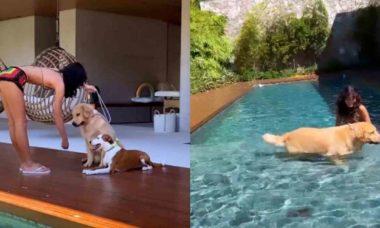 Bruna Marquezine curte dia de sol e brinca com seus cachorros na piscina